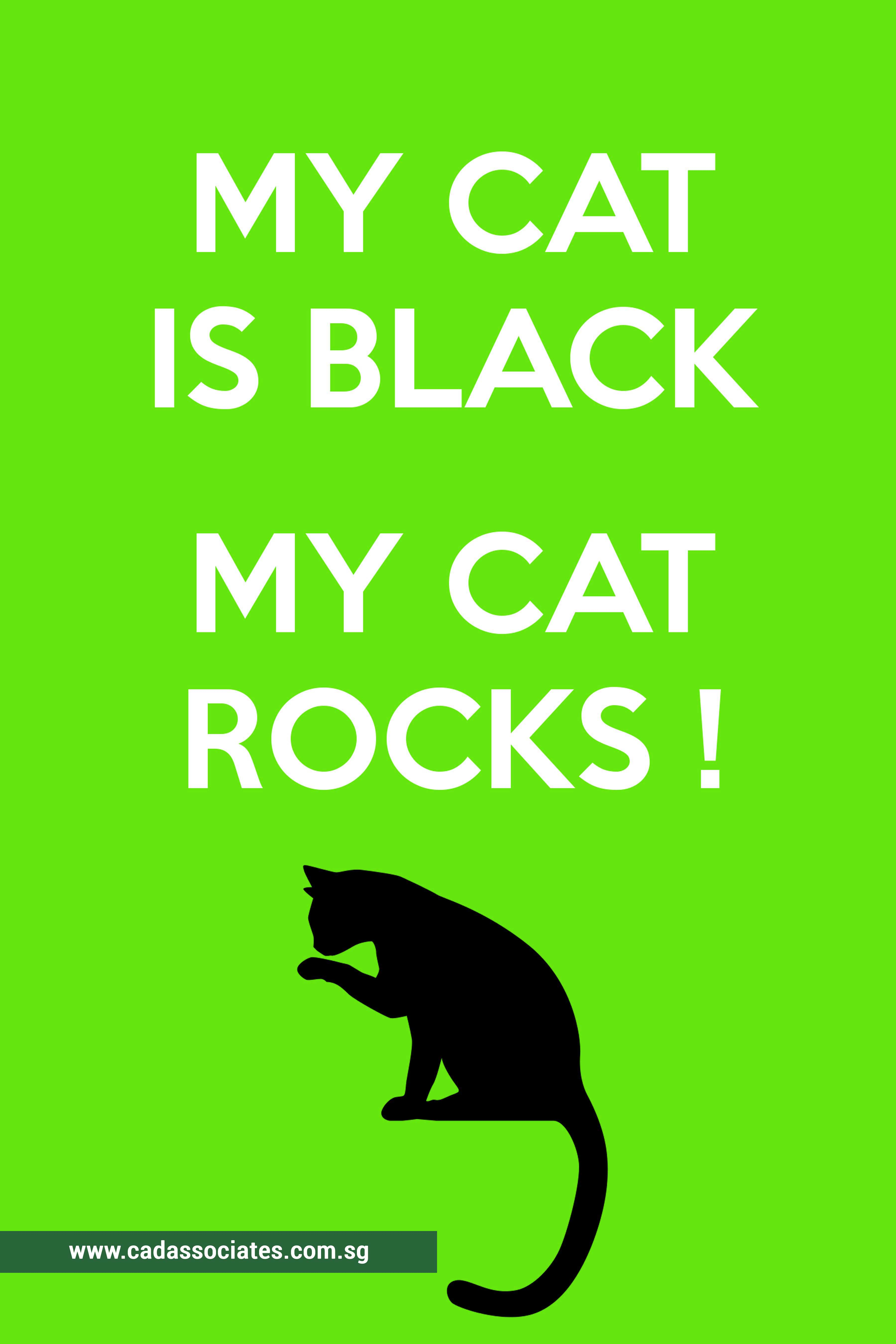 Quotes For Cat Lovers CAD Associates